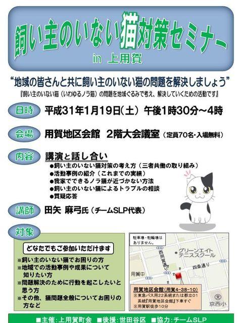 kamiyoga01.jpg